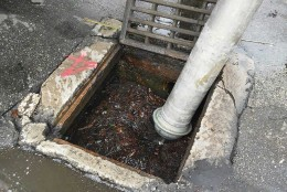 Καθαρισμός φρεατίων υδροσυλλογής